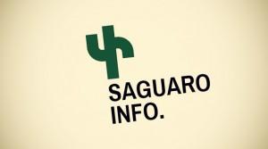Dizajn kaktus logotipa